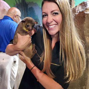 honey the kinkajou at seaquest utah